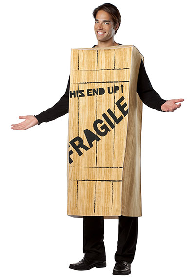 fragile Christmas costume