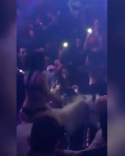 horse struck by anxiety in south beach nightclub