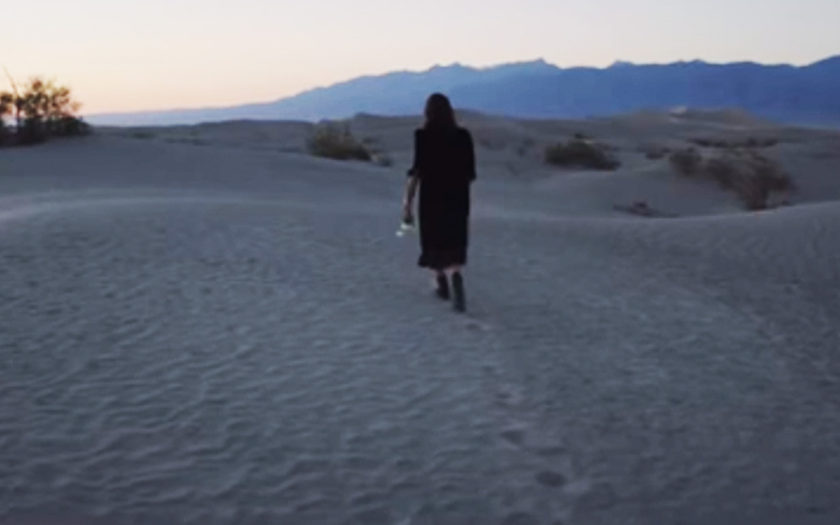 screenshot of cat power wandering though desert holding a bouquet of white roses